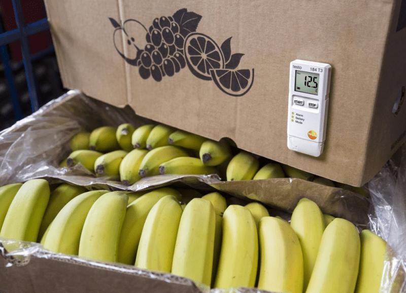 Monitorowanie i dokumentowanie temperatury, wilgotności i wstrząsów w usługach logistycznych dla żywności